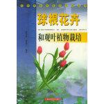 球根花卉和观叶植物栽培――东西部农业技术交流丛书