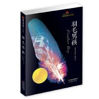 国际大奖小说成长版――羽毛男孩
