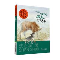 沈石溪画本(第一辑)・红奶羊