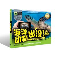AR亲子互动百科系列:海洋动物出没!