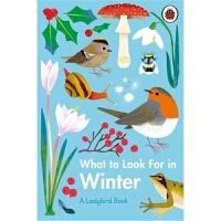 预售 What to Look For in Winter 预计九月发货