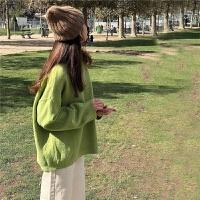 春季韩国宽松百搭果绿色polo领套头长袖毛衣女复古纯色上衣外套女