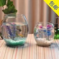 创意水族箱生态圆形玻璃金鱼缸 大号乌龟缸 迷你小型造景水培花瓶 15炮弹缸 送彩石