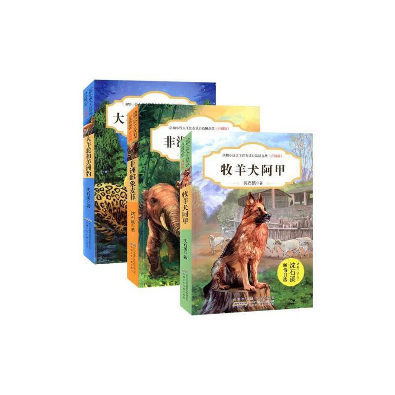 全套3册 动物小说大王沈石溪自选集(升级版)非洲雌象麦菲+大羊驼和美洲豹+牧羊犬阿甲 9-12-15周岁儿童课外阅读书籍