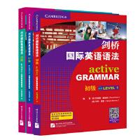 剑桥国际英语语法(套装3册)