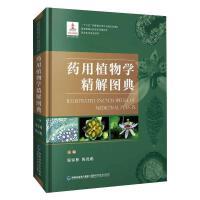 药用植物学精解图典 福建科学技术出版社