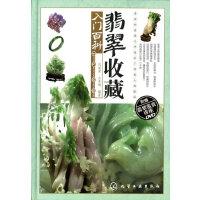 翡翠收藏入门百科(附光盘)