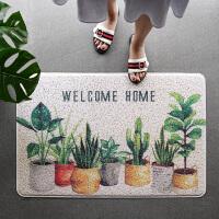 蹭脚垫地毯门口门厅入户门玄关地垫丝圈门垫家用厨房北欧塑料pvc