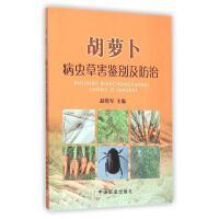 胡萝卜病虫草害鉴别及防治 赵晓军