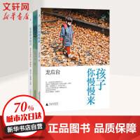 龙应台人生三书(孩子你慢慢来+亲爱的安德烈+目送) 广西师范大学出版社