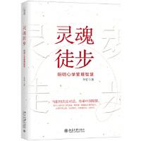 [二手旧书9成新]灵魂徒步――阳明心学管理智慧李安 9787301295120 北京大学出版社