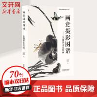 画意摄影图谱――让摄影走进绘画 中国摄影出版社