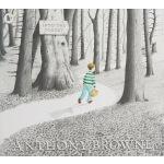 英文原版绘本 3 6岁 Into the Forest 森林深处 Anthony Browne 安东尼布朗 走近森林