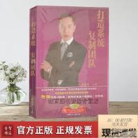 打造系统 复制团队 洪豪泽 4DVD 视频讲座光盘光碟