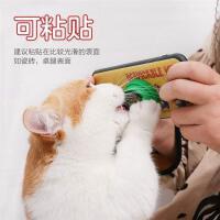猫薄荷球猫自嗨磨牙逗猫神器棒棒糖舔舔乐逗猫棒耐咬猫咪玩具