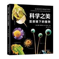 科学之美・显微镜下的植物