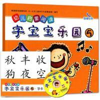 幼儿启蒙阅读字宝宝乐园5 幼儿园教材幼小衔接学龄前儿童看图识字书卡片认字配教学光盘dvd0-1-2-3-4-5-6岁早