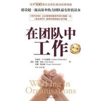 【二手旧书九成新】在团队中工作卡卡巴德斯,班克,维克姆;金涛,孔天津人