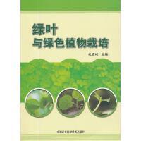绿叶与绿色植物栽培