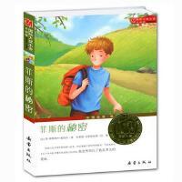 菲斯的秘密/国际大奖小说/外国文学/青少年儿童成长励志文学小说童书/6-16岁中小学生课外阅读书新蕾出版社书籍/