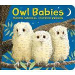 【预订】Owl Babies