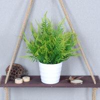 仿真植物盆景绿植塑料盆栽植物装饰假小绿植盆栽假波斯叶仿真绿萝