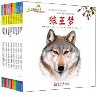 大自然的故事科学童话绘本系列套装(全13册)
