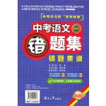 中考语文错题集