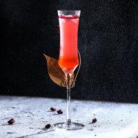 玻璃苏打水创意起泡酒杯甜酒基酒香槟杯 餐厅ins鸡尾酒杯套装