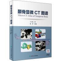 颞骨显微CT图谱 人民卫生出版社