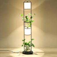 【品牌特惠】铁艺植物落地灯创意茶几置物简约客厅书房卧室立中式水培时尚花架