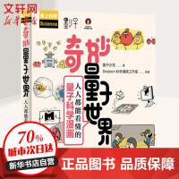 【2019中国好书】奇妙量子世界 人人都能看懂的量子科学漫画 人民邮电出版社