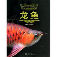 龙鱼/观赏鱼文化鉴赏饲养珍藏丛书