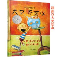 大卫,不可以――1998年《纽约时报》年度最佳图画书 美国凯迪克大奖经典儿童绘本(启发童书馆出品)