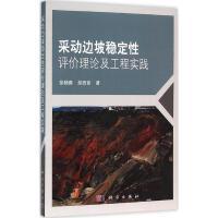 采动边坡稳定性评价理论及工程实战 徐杨青,吴西臣 著