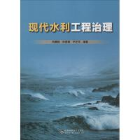 现代水利工程治理 刘勇毅,孙显利,尹正平 编著