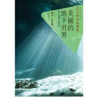 凡尔纳作品精选:美丽的地下世界 9787544730891