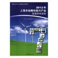 2012年上海市战略性新兴产业发展研究报告