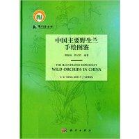 中国主要野生兰手绘图鉴