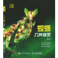 刀斧精灵 螳螂