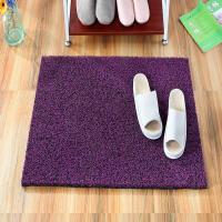 裁剪加厚丝圈门口门前地垫门垫门外进门室外蹭脚垫家用塑料地毯定制