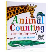 捷克�L本大��Petr Horacek �游��捣�翻�� 英文原版�L本 Animal Counting 幼�和�英�Z�⒚衫L本