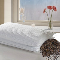 全荞麦枕头荞麦皮枕芯颈椎枕内蒙甜荞麦壳苦荞麦壳填充枕定制