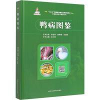 鸭病图鉴 中国农业科学技术出版社