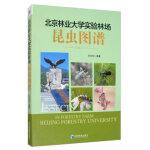 北京林业大学实验林场昆虫图谱