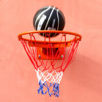 WITESS篮球架儿童家用训练篮球框挂式青少年室外篮圈成人比赛篮筐