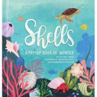 Shells 贝壳:夏日立体书 英文原版儿童立体书
