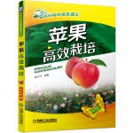 苹果高效栽培(高效种植致富直通车)