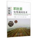 彩图版羊肚菌实用栽培技术