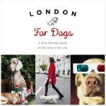 London For Dogs 伦敦的小狗 英文原版宠物生活 摄影集